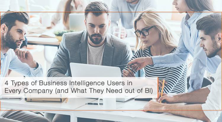4 Types of Business Intelligence Users in Every Company (and what they need out of BI)